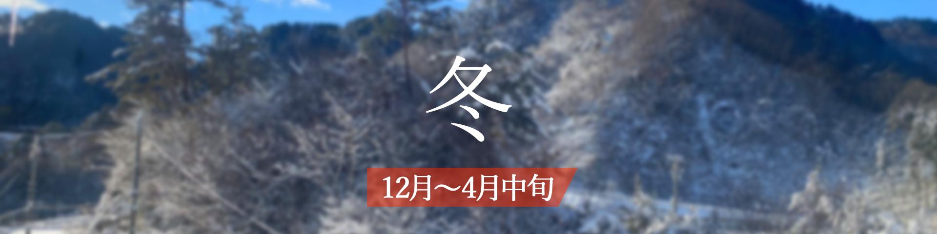 <冬>12月~4月初旬