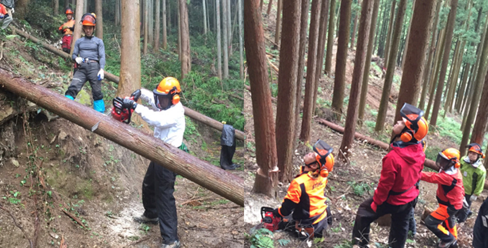 自伐型林業